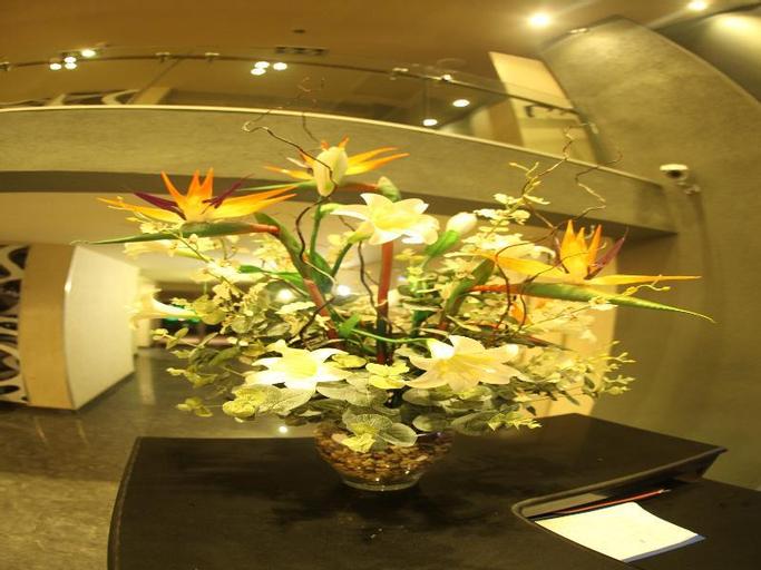 Avia Hotel & Resort,