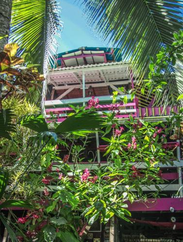 Wal-Aba Eco-Lodge, Talamanca