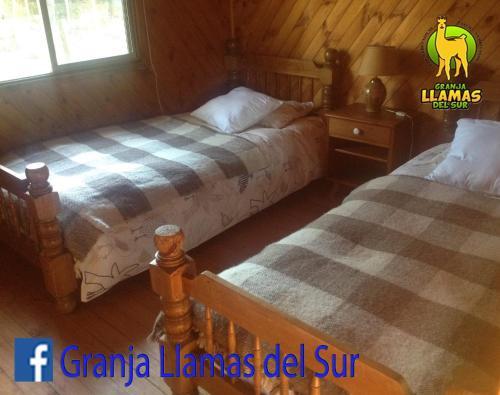 Granja Llamas del Sur, Cautín