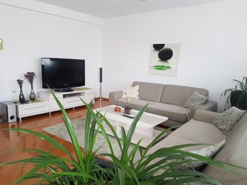 Popov apartments,