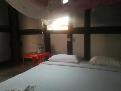 LV Backpackers, Bassein