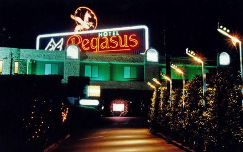 HOTEL Pegasus (Adult Only), Honjō