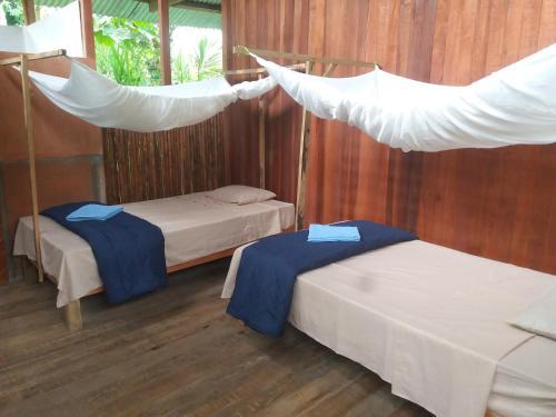 Papaya Eco Lodge, Manu