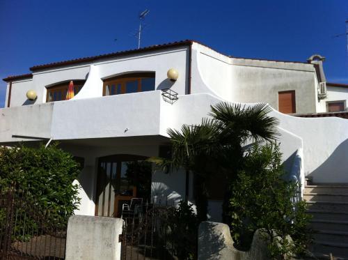 Villa Palma, Venezia