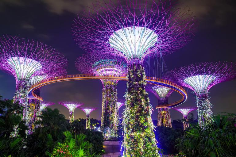 ANA Singapore, Tanglin