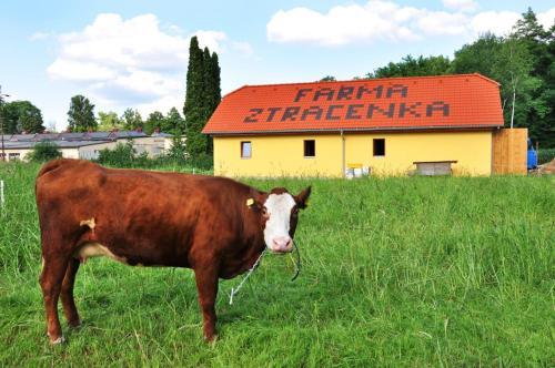 Farma Ztracenka, Benešov