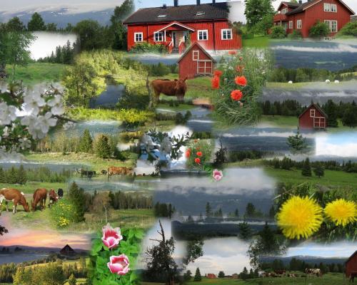 Gran nordre, Snåsa