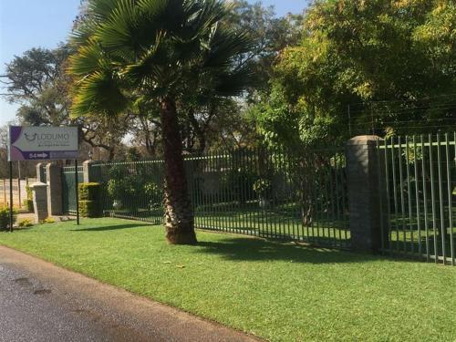 Lodumo Guest House, Bulawayo