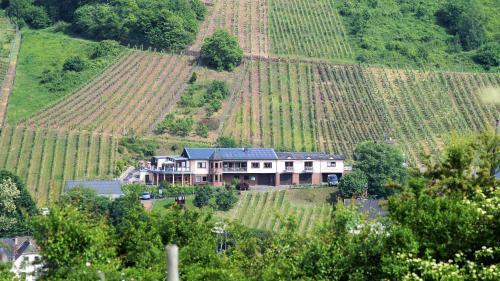 Urlaubsweingut Zecherhof, Cochem-Zell