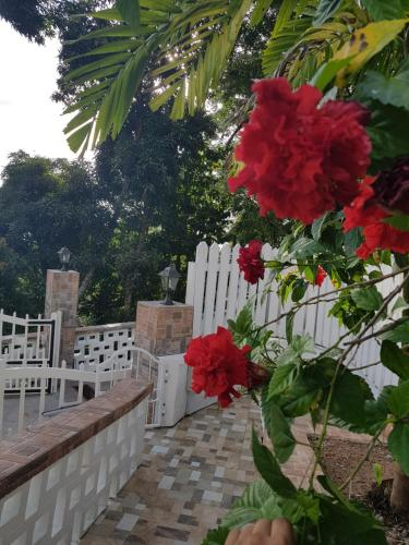 Janes' Serenity Guesthouse,