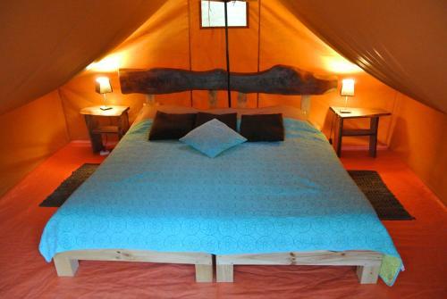 Maule Camp, Linares