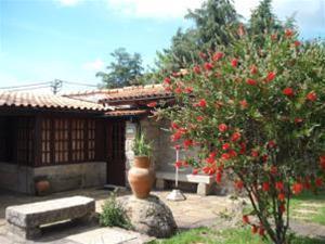 Silvalde Garden Low Cost, Espinho