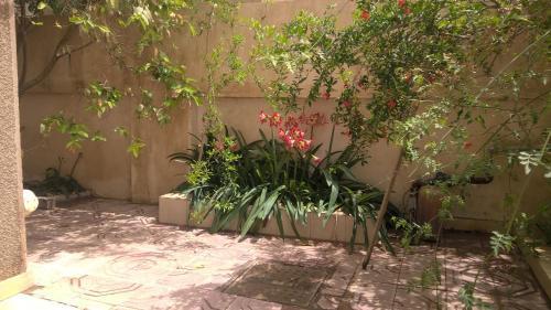 hisam house, Al-Khalifa