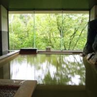Shirogane Onsen Hotel, Biei
