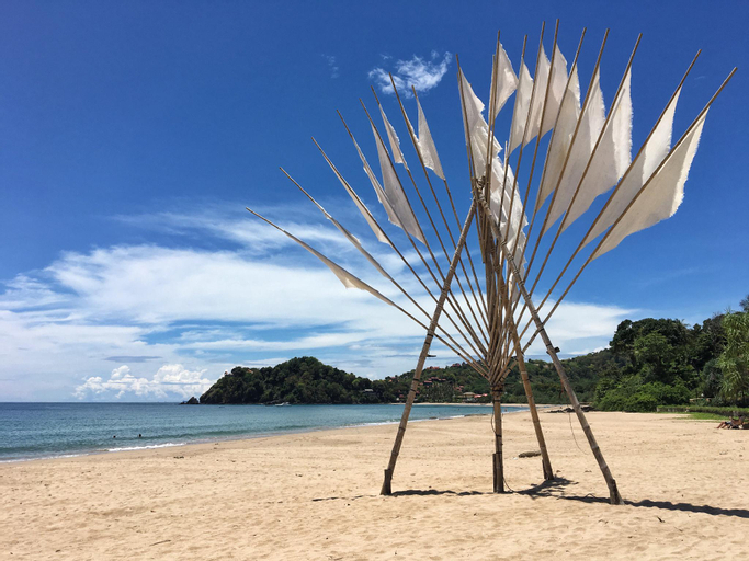 Tree in the sea, Ko Lanta