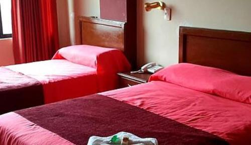 Hotel Cristal Bermejo, Aniceto Arce