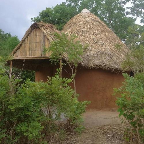 Selous Mapumziko Lodge, Liwale