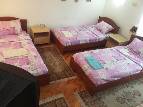 Apartment Kotin, Pirot
