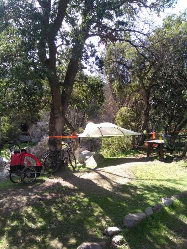 Patara Outdoors, Quillota
