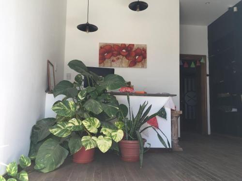 hotel restaurante paso del sur, Atreucó
