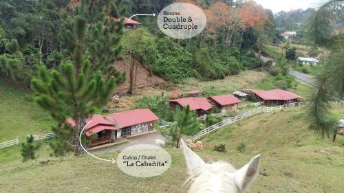 Finca Tres Equis - Farm and Forest, Turrialba