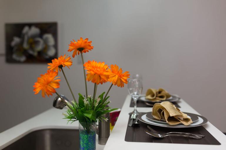 New Kingston Premium Guest Apartment,
