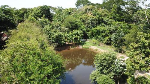 Recanto na Floresta, Rio Branco
