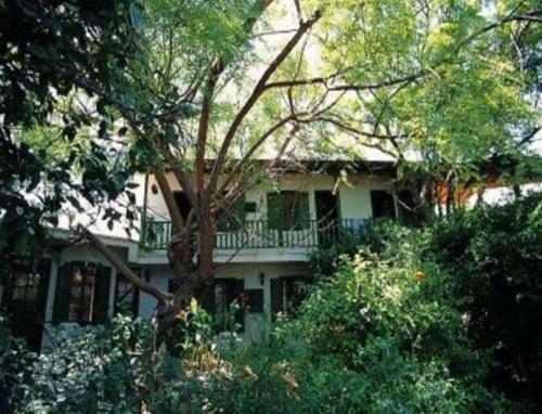 Antony's Garden House,