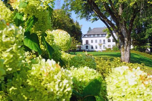 Dorint Parkhotel Siegen, Siegen-Wittgenstein