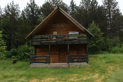 Cabin in the woods,
