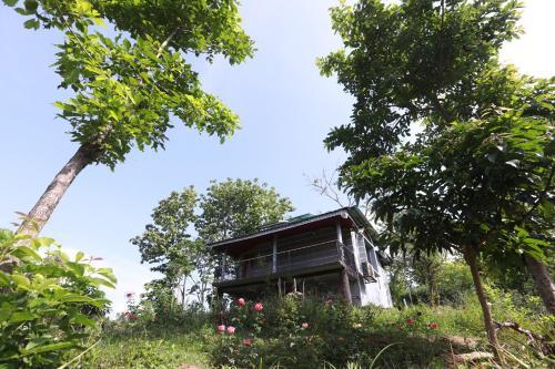Venus Resort Pvs Ltd, Bandarbon