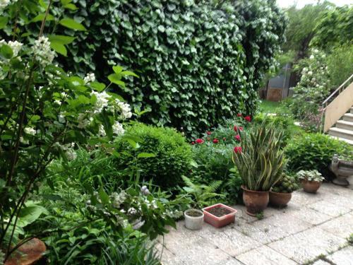 Beautiful Garden Guesthouse, Gori