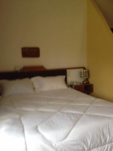 Roha Hotel, Semen Wello
