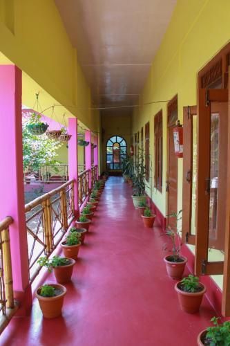 Park Resort, Kaziranga, Golaghat