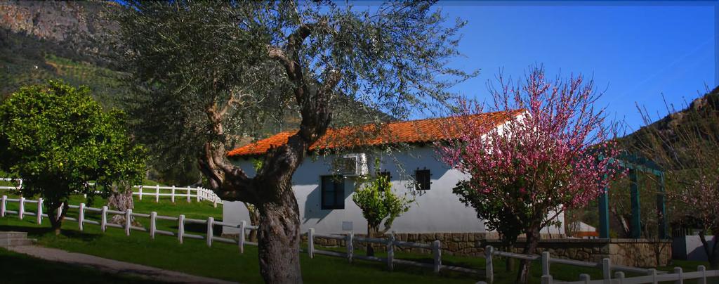 Casas Rurales Oca Aldeaduero, Freixo de Espada à Cinta