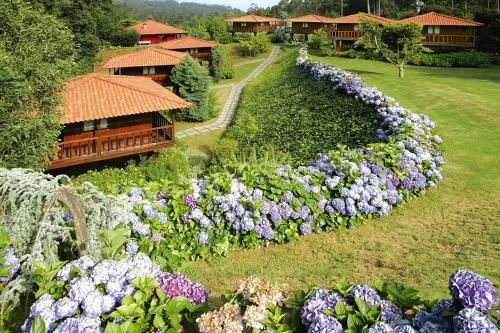 Holiday homes Quinta das Eiras Santo da Serra - FNC02016-FYD, Santa Cruz