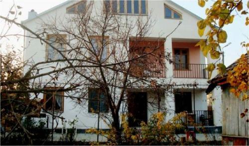 Guesthouse Megzuri, Dedoplis Tskaro