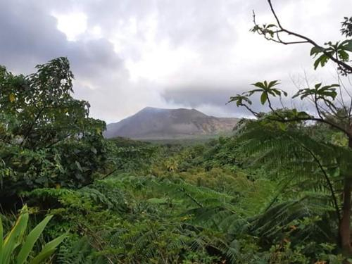 Volcanic center view, West Tanna