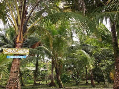 Selva Cielito, Nuquí