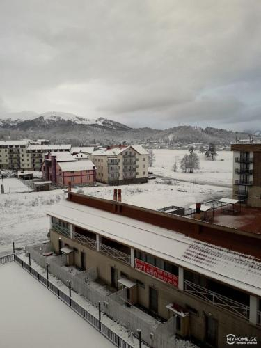 mgzavrebi, Borjomi