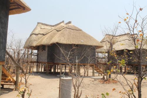 Dzibanana Lodge & Camping, Tutume