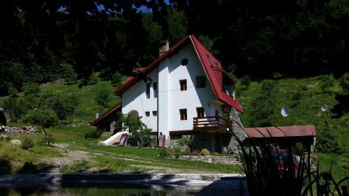 Pensiunea Vila Cerbul, Obarsia-closani