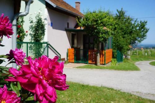 Holiday Home Mađerka, Štrigova