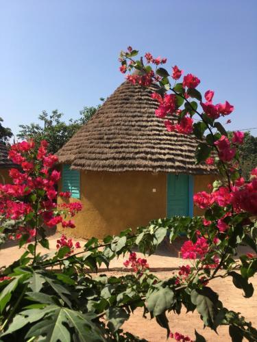 Le Nieriko, Kédougou