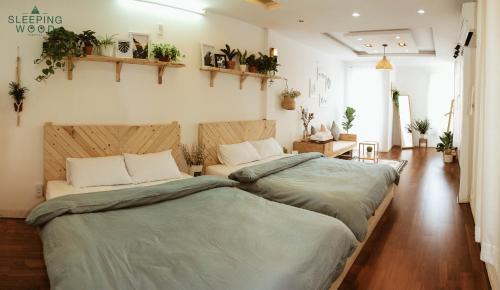 Sleepingwood Homestay, Thanh Khê