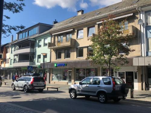 Voss Apartments - Vangsgata 42, Voss
