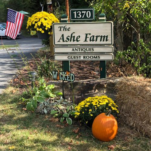 The Ashe Farm, Madison