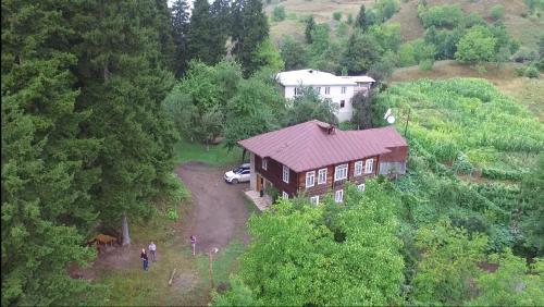 Farvana, Khulo