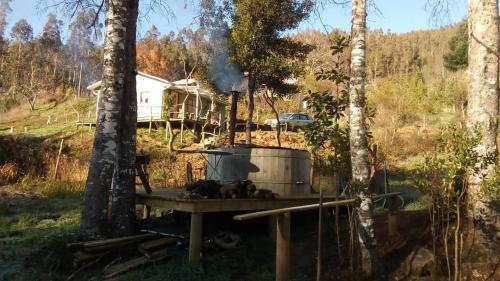 Cabana tinaja vivacor, Malleco