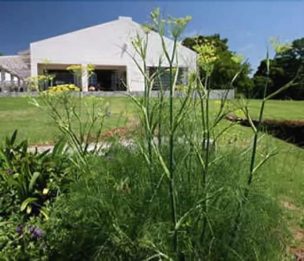 Kings Walden Garden Manor, Mopani
